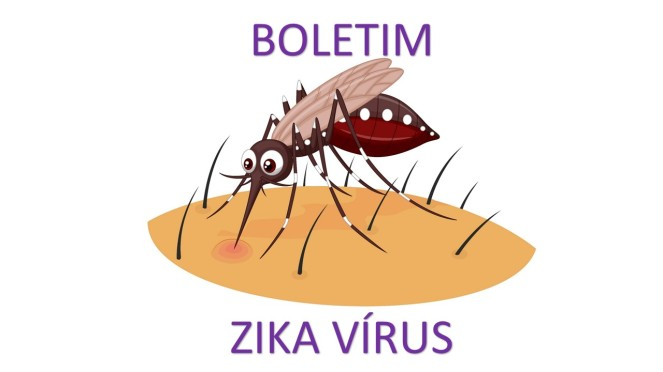 BOLETIM-ZIKA1